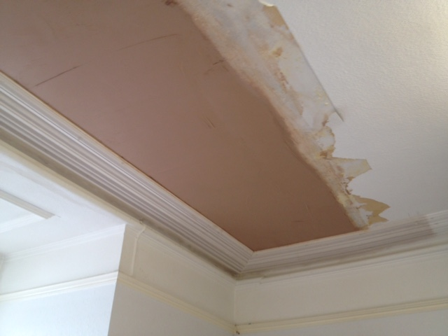 Ceiling repair & Cornice replacement, Plymouth
